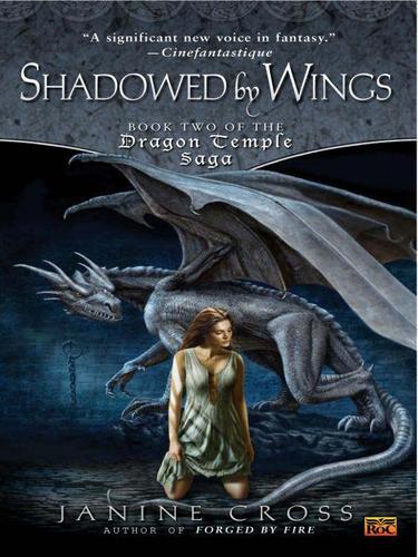 Shadowed By Wings