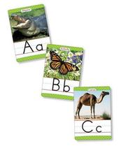 Animals From A to Z Manuscript Alphabet Set